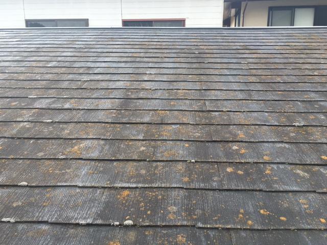 長生郡長生村とんかつ田舎家様 屋根・外壁塗装工事